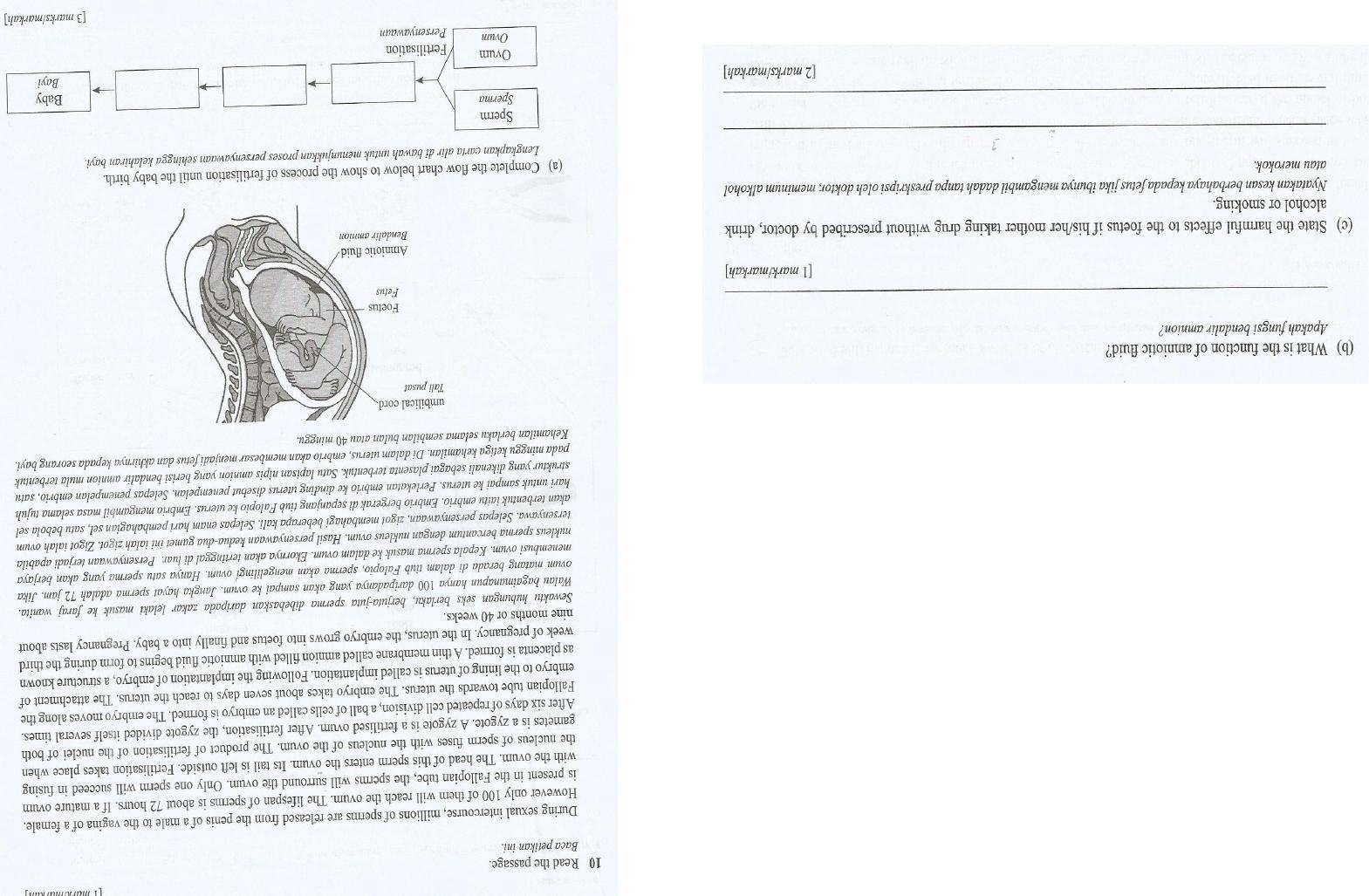 Latihan Biologi Tingkatan 4 Berguna Latihan Bab 4 Pembiakan form 3 Of Senarai Latihan Biologi Tingkatan 4 Yang Power Khas Untuk Para Murid Dapatkan!
