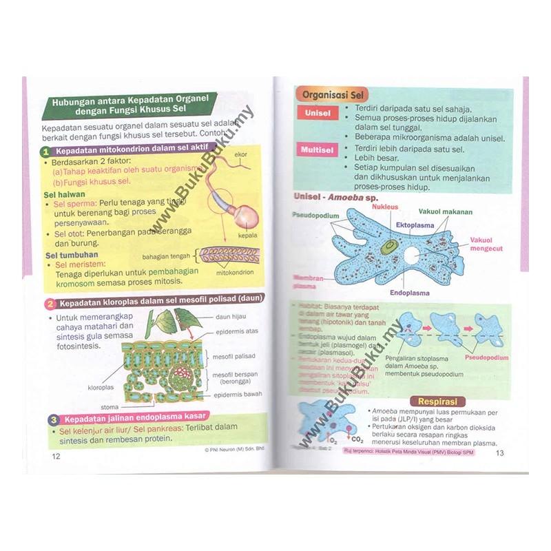 Nota Biologi Tingkatan 4 Yang Sangat Menarik Revisi Mobil Biologi Spm Tingkatan 4 5 Of Himpunan Nota Biologi Tingkatan 4 Yang Terhebat Untuk Ibubapa Perolehi