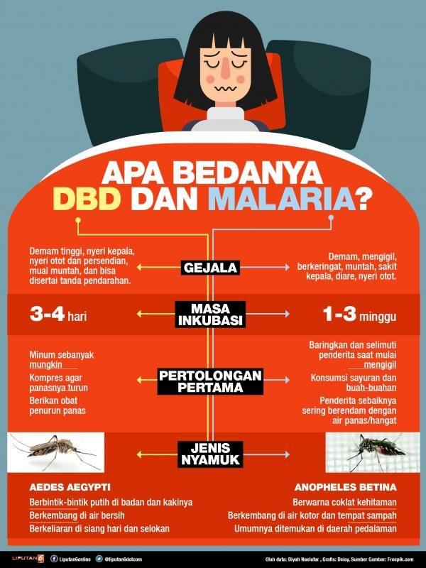 Contoh Teka Teki Nyamuk Yang Bernilai Untuk Murid