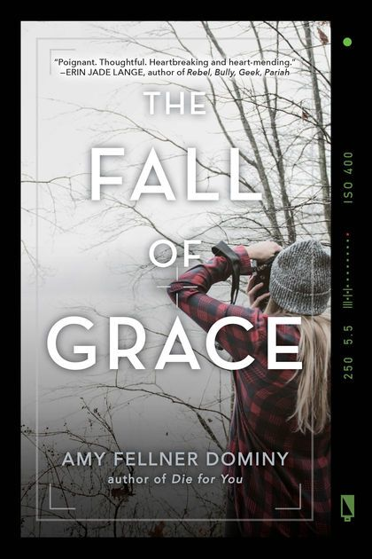 Poster Bullying Power the Fall Of Grace by Amy Fellner Dominy On Apple Books