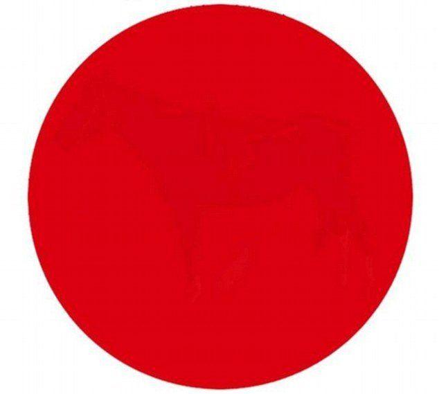 apakah anda bisa melihat sesuatu dalam lingkaran merah ini