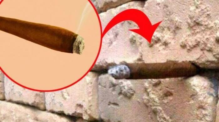 nampak tak yg putih tu abu rokok cerut