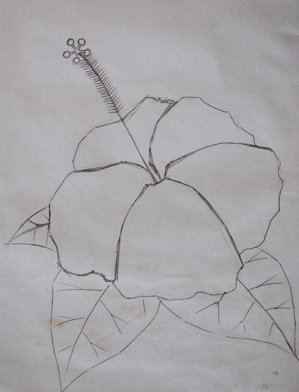 gambar bunga raya untuk mewarna hebat pedidikan seni visual gambar yang dimuat turun untuk diwarnakan