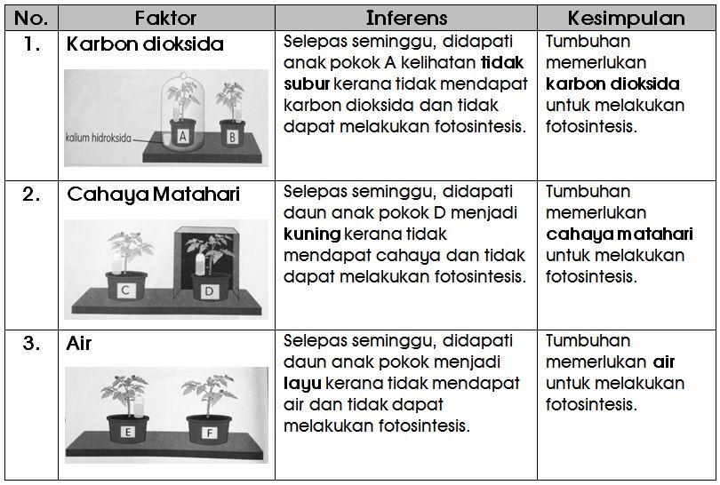 Teka Silang Kata Sains Tingkatan 1 Baik Nota Sains Tahun 4 Unit 5 Proses Hidup Tumbuhan Chang Tun Kuet